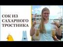 Тростниковый сок изготовление Камбоджа