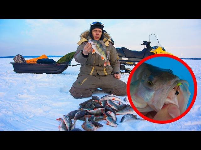 ЧУДО ЛУНКА! 👍👍👍 Зимняя рыбалка 2018 на ОВХ. Ловля окуня на чертика.