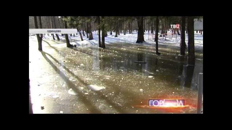В очередной раз фекалии залили Новую Трехгорку и Подушкинский Лесопарк
