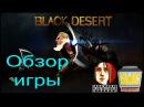 Обзор Black Desert от SERGO для ГВЦ/GWC - Игры Без Цензуры