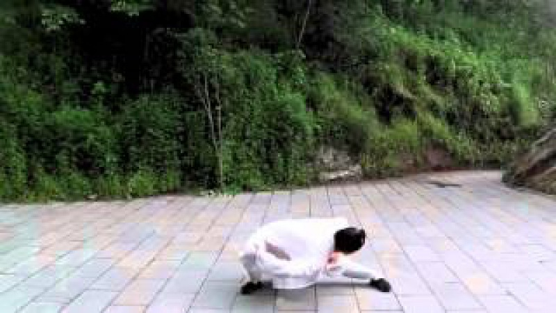 武當十二段錦 Wudang Twelve Section Brocade