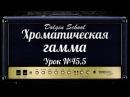 Хроматическая гамма - Уроки игры на электрогитаре №45,5 Dolgin School