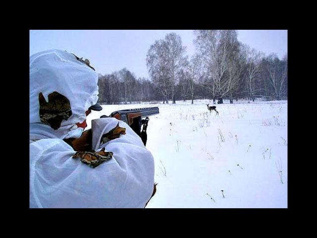 Как охотиться на косулю с подхода? Секреты сибирских охотников!