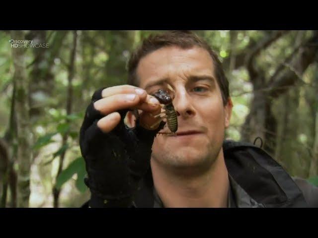 Выжить любой ценой Man vs Wild HD сезон 7 эпизод 4 - Земля Маори Новая Зеландия