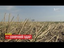 Через глобальне потепління в Україні змінилися умови та місця вирощування с/г культур