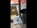 Machine Gun Kelly My munchie tray (Motley Crue - The Dirt)