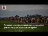 Из-за чего выходят на митинг мусульмане в Грозном и в Москве
