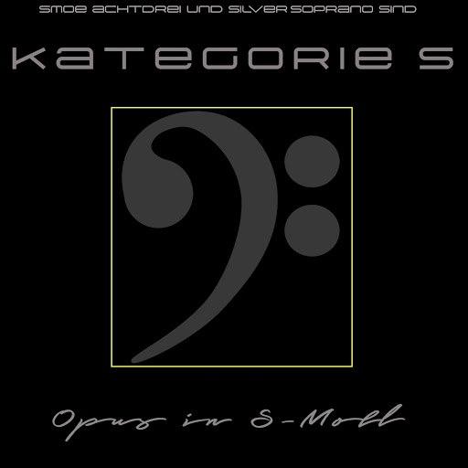 Kategorie C альбом Opus in S-Moll