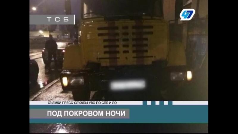 ТК 47 канал - Сотрудники ОВО задержали троих граждан, которые совершили кражу электрокабеля