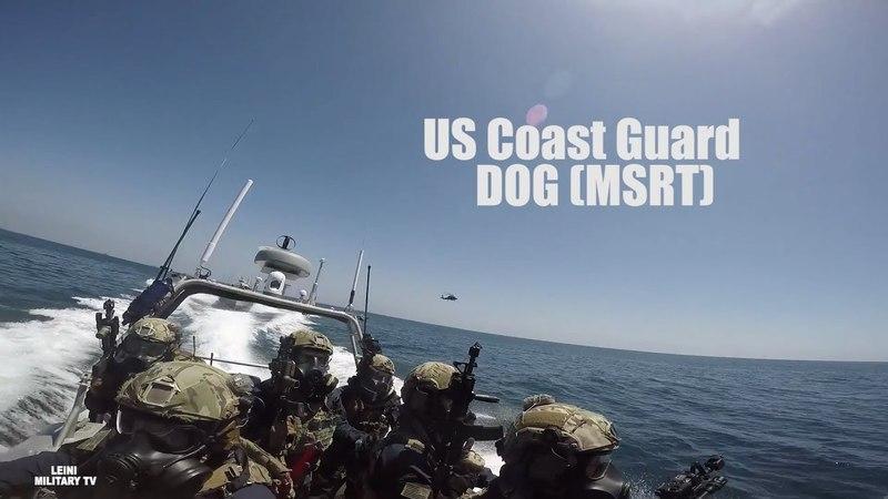 СпН Береговой Охраны США US Coast Guard DOG MSRT