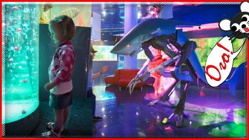 Краснодарский океанариум Красиво! Путешествуем с детьми Krasnodar Aquarium
