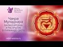 Медитация   Очищение чакр   Муладхара чакра   Гармонизация чакры в Пирамиде Света   Сеанс Рейки