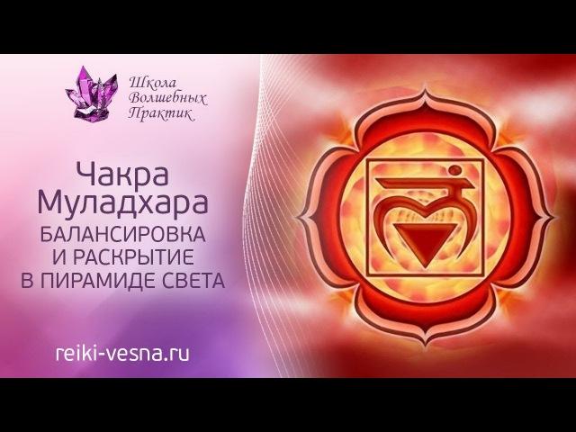 Медитация | Очищение чакр | Муладхара чакра | Гармонизация чакры в Пирамиде Света | Сеанс Рейки