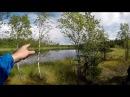 Kalliojärvi Nokia Retkeily Suomen luonnossa kesällä