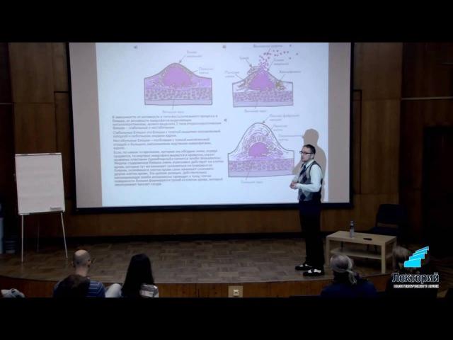 Лекция Атеросклероз - чума 20 века - Алексей Утин