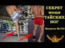 Почему у Тайцев такие мощные ноги? Why Thai boxers have such powerful legs? gjxtve e nfqwtd nfrbt vjoyst yjub? why thai boxers h