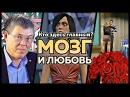 Мозг и любовь Кто здесь главный 4 серия Вячеслав Дубынин