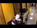 Преподавателя в США демократично вывели из школьного совета в наручниках