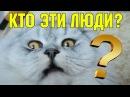 Кева в шоке Кто приехал к зверодтекам