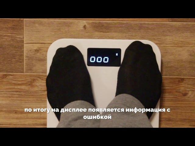 Пример работы весов MGB Body Fat Scale