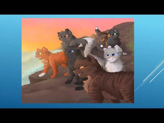 Коты Воители История Ежевики