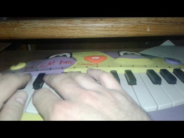 Mozart -Eine Kleine Nachtmusik(A Little Night Music) Cat Piano Cover