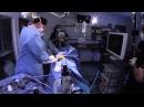 Артроскопическое лечение двусторонней фрагментации венечного отростка локтевой кости при дисплазии локтевого сустава у собаки / Arthroscopic Treatment of Bilateral Fragmented Cornoid Process from Elbow Dysplasia