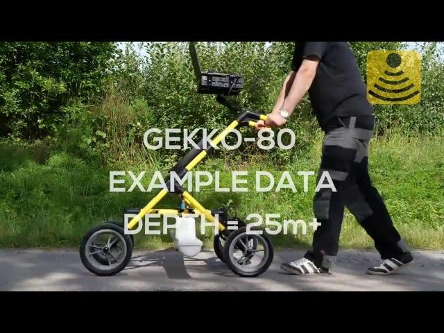 Сбор и обработка данных при помощи Георадара Akula 9000c и антенны Gekko-80