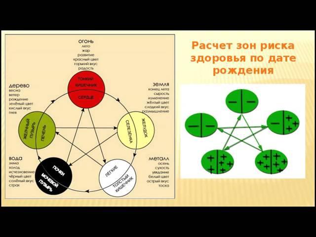 Галина Беляева Основы системы У син и секреты восточной медицины 21 06