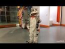 Котёнок ЧИ / ТРЦ Титан 3 этаж