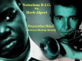 herb albert vs notorious BIG HypnotizeRise
