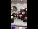 Роза в Колбе Оригинал ❗️ Бренд . Вечная Роза под Колпаком , Куполом . Стабилизированные Живые Цветы .