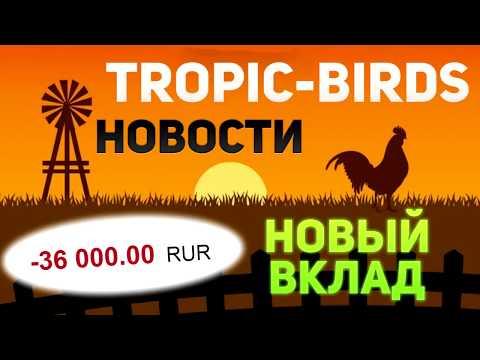 ВАЖНОЕ ОБНОВЛЕНИЕ В TROPIC BIRDS СТАТУСЫ, ДОХОДНОСТЬ, ПРОФИТ