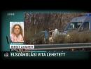 Török bolgár elszámolási vita volt az M5 ös mellett elkövetett gyilkosság