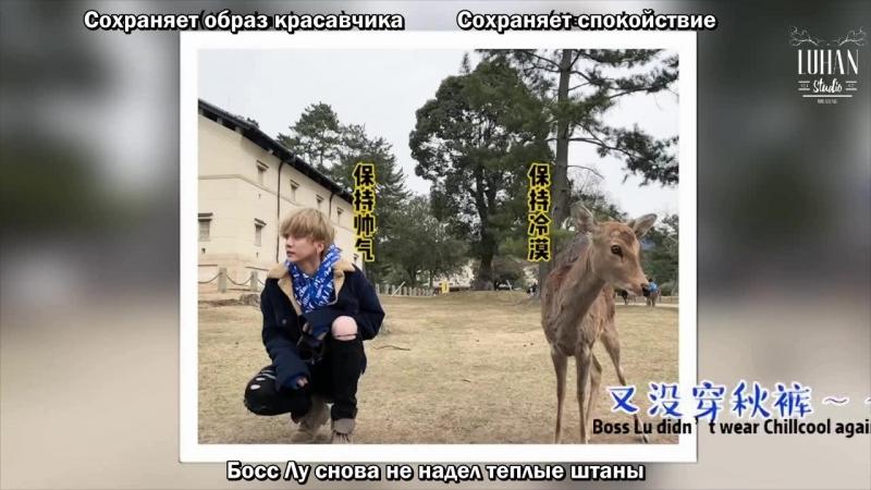 русс.саб Театр бегущего Лу - Возвращение короля оленей