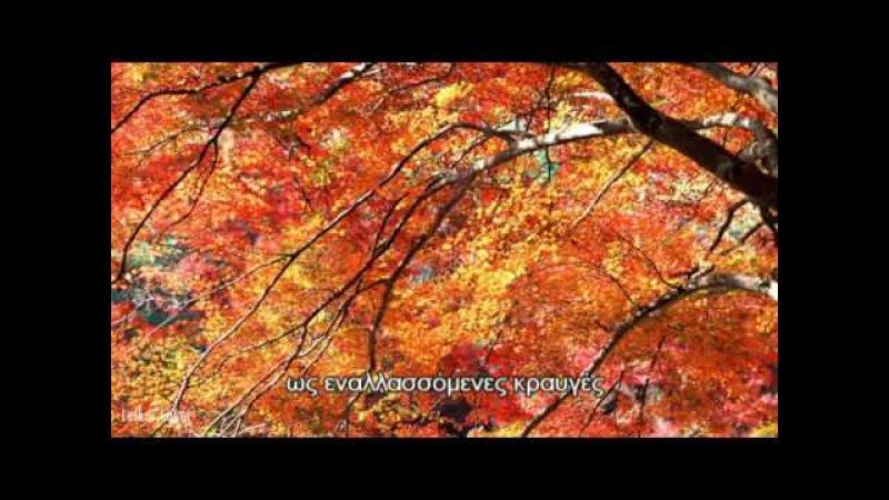 Shika no Tone -Tajima Tadashi Shakuhachi flute