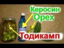 Настойка из зеленых грецких орехов.Орехи на керосине. Тодикамп. Суставы. Радикул...