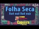 Folha Seca Xuê, xuê, xuê, xuà, Mestre Mão Branca capoeira Gerais - Capoeira Song