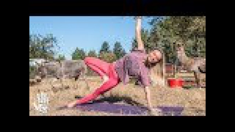 Pilates Hard Core Blast ♥ Yoga Workout | Out To Pasture Sanctuary