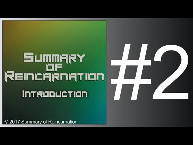 Summary of Reincarnation - Fatal Confusion