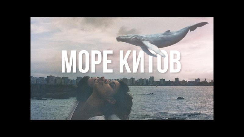 музыка- Море китов Синий кит Тихий дом f57