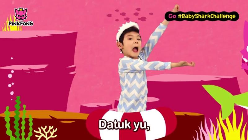 Go BabySharkChallenge Lagu Tarian Asil Pinkfong Bayi Yu dari BabySharkChallenge Pinkfong