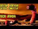 [infaSTO] Олгой-Хорхой - Гигантский червь смерти (вся инфа)