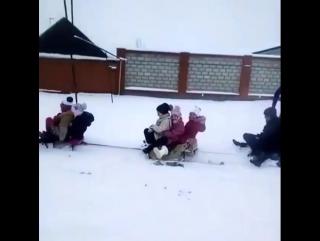 prikols_video_BeAsr7YH2y5.mp4