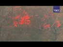 В Черногории эвакуируют людей из-за сильнейших лесных пожаров