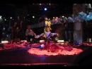 АнсамбльЦыганский Табор Шоу Арт-Магия на Новый год, свадьбу, юбилей.Белгород Липецк Воронеж