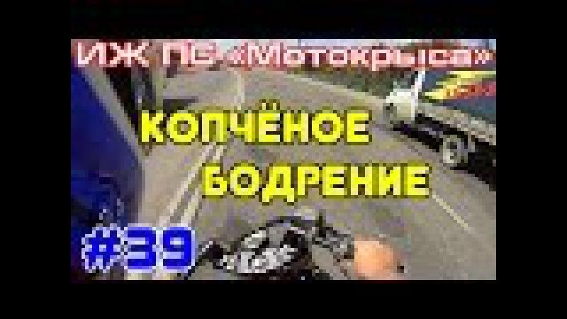 ИЖ ПС Мотокрыса 39 - Копчёное бодрение