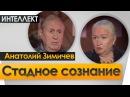 Стадное сознание Ночь Интеллект Черниговская №23 Анатолий Зимичев