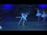 Лебединое Озеро П И Чайковский Челябинский Театр Оперы и Балета