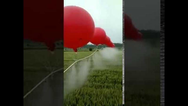 Опрыскивание полей в Китае с помощью воздушных шаров